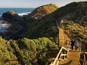 Cape Schanck Mornington Peninsula walkway and ocean