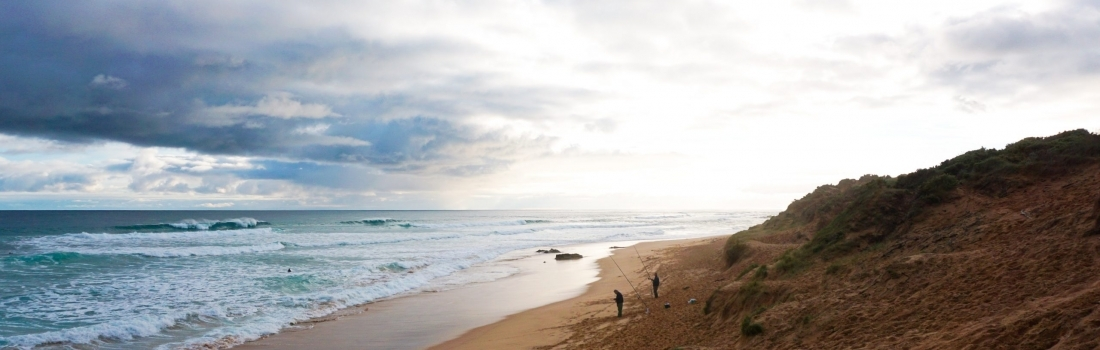 5 Activities to do on the Mornington Peninsula