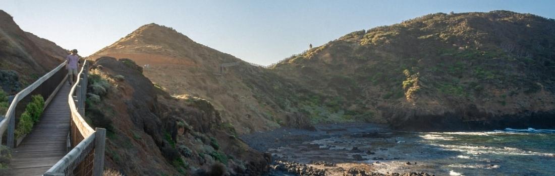 Day Trips Along the Mornington Peninsula