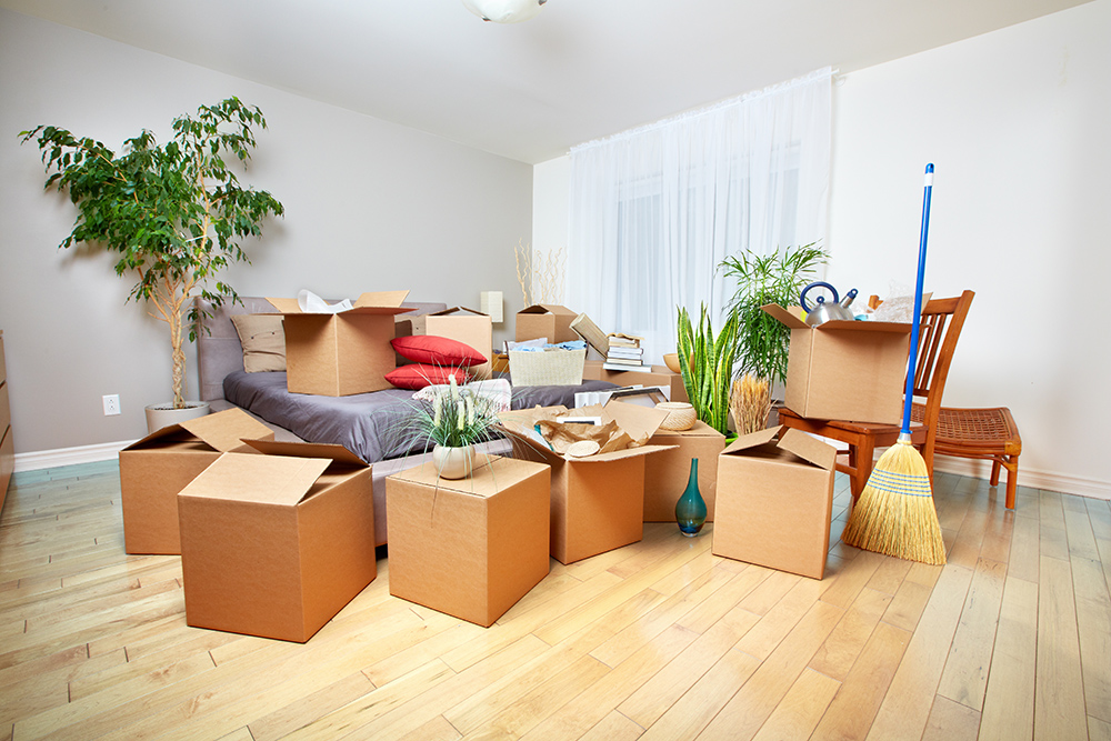 How to pack your boxes like a professional